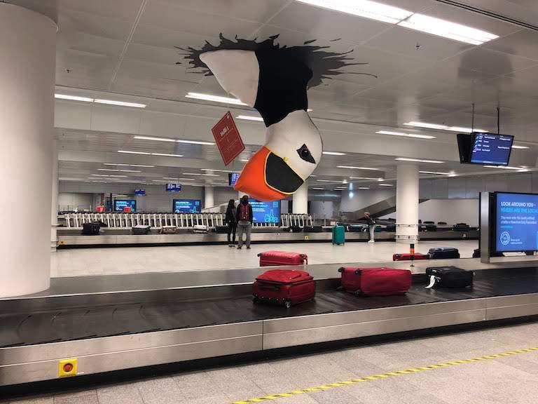 ケフラヴィーク国際空港 天井からパフィン