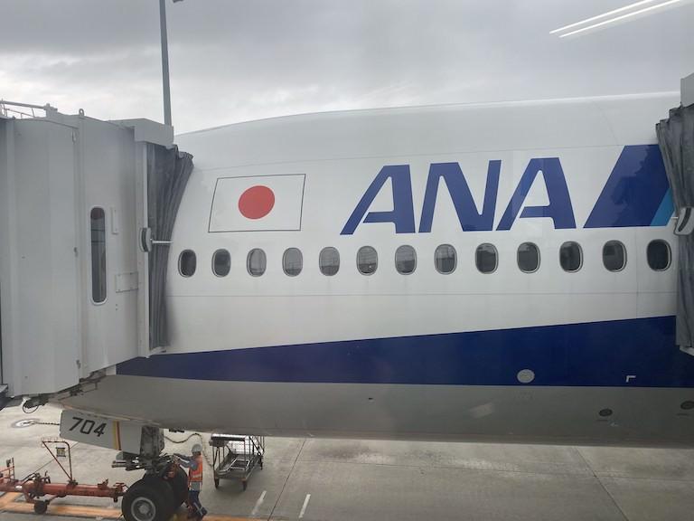 ANA機体ロゴ
